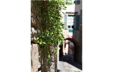 Stories of Quarantine Stillness, Bergamo